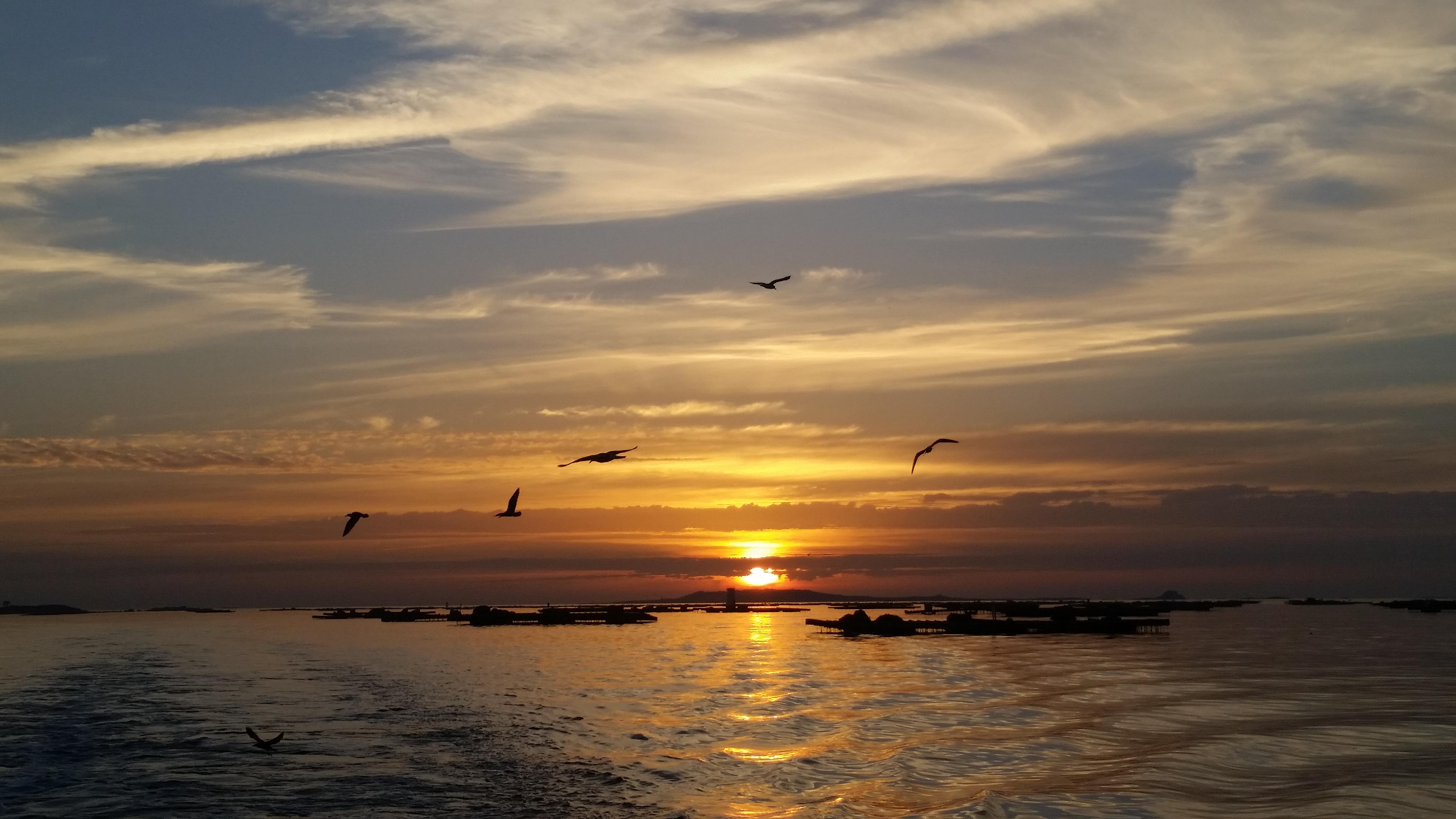 Puesta de sol en barco de O Grove